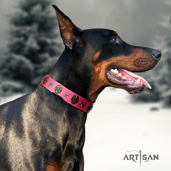 Doberman fancy walking full grain natural leather collar with embellishments for your four-legged friend