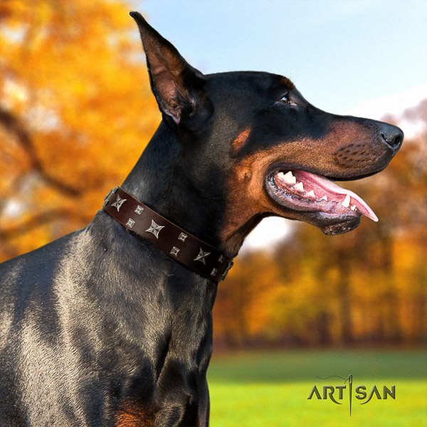 Doberman comfortable wearing natural leather collar with stylish adornments for your dog