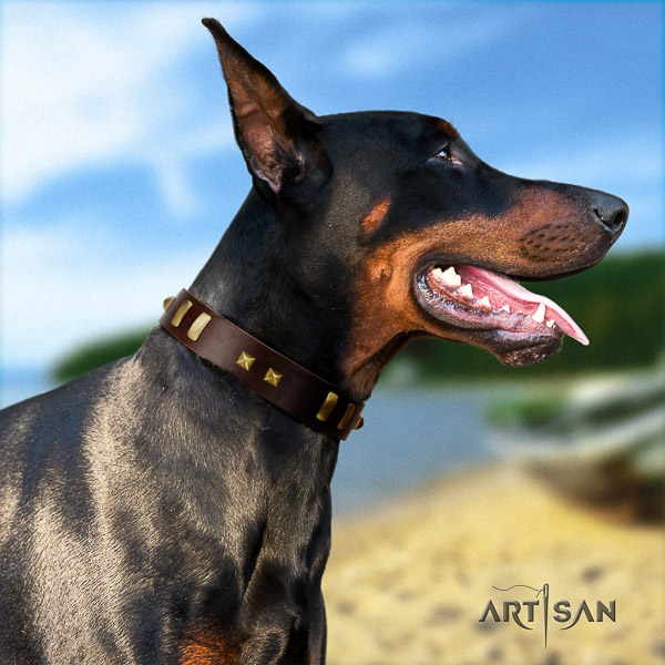 Doberman daily use leather collar with decorations for your four-legged friend