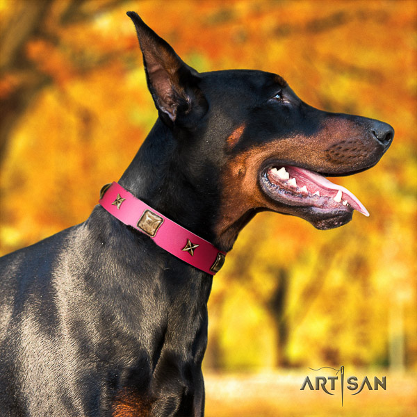 Doberman comfy wearing genuine leather collar with adornments for your dog