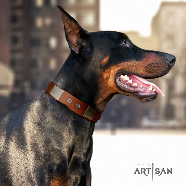 Doberman fancy walking genuine leather collar with adornments for your pet