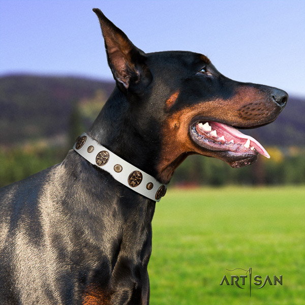 Doberman comfy wearing natural leather collar with adornments for your pet