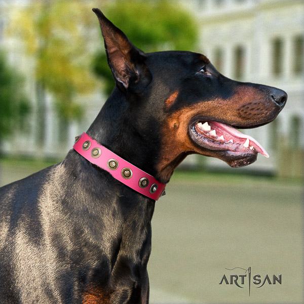 Doberman handy use leather collar with adornments for your dog