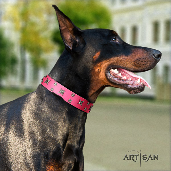 Doberman daily use genuine leather collar with stunning adornments for your doggie