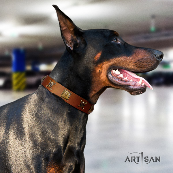 Doberman everyday use full grain genuine leather collar with embellishments for your dog