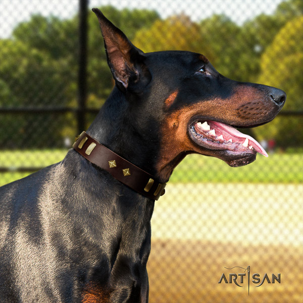 Doberman everyday use leather collar with adornments for your canine