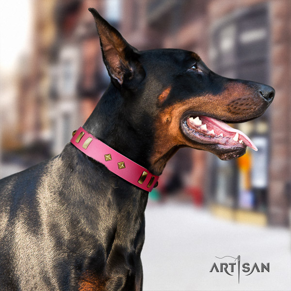 Doberman daily use natural leather collar with studs for your dog