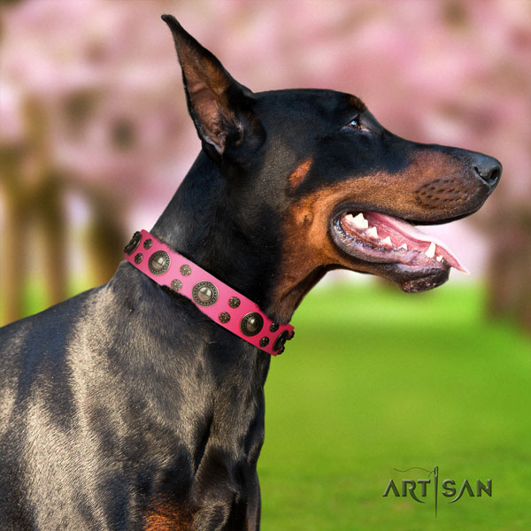 Doberman leather dog collar with adornments for your lovely doggie
