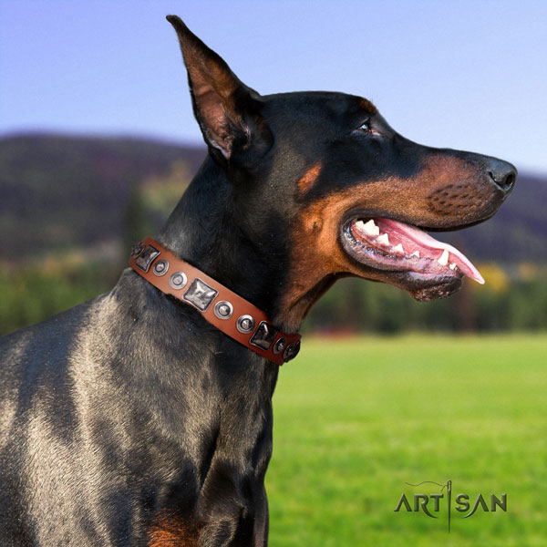 Doberman full grain genuine leather dog collar with adornments for your beautiful canine