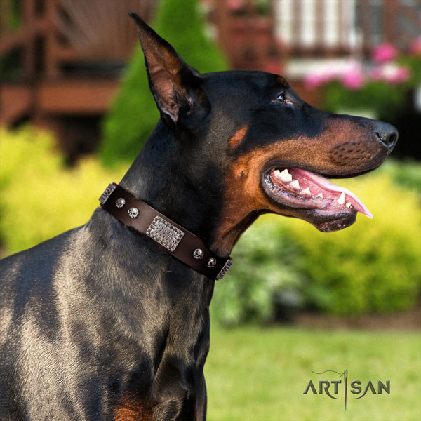 Doberman unique natural genuine leather collar with embellishments for your canine