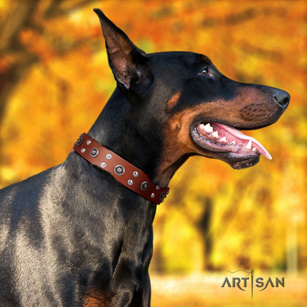 Doberman natural genuine leather dog collar with adornments for your stylish dog