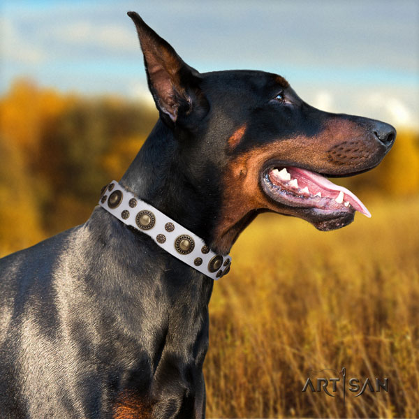 Doberman full grain leather dog collar with embellishments for your attractive dog