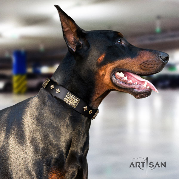 Doberman exquisite full grain leather collar with studs for your four-legged friend
