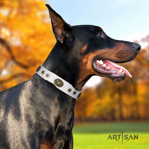 Doberman full grain natural leather dog collar with adornments for your beautiful dog
