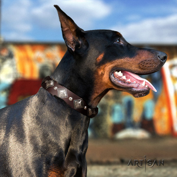Doberman full grain genuine leather dog collar with decorations for your handsome doggie