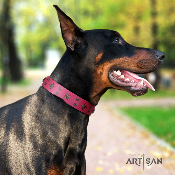 Doberman full grain leather dog collar with decorations for your handsome canine