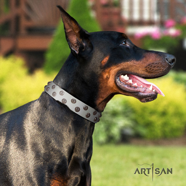 Doberman natural genuine leather dog collar with embellishments for your lovely pet