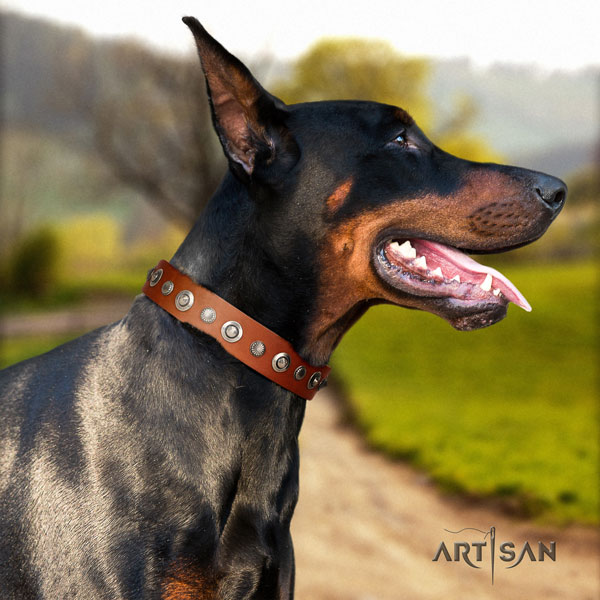 Doberman stylish full grain natural leather collar with embellishments for your canine
