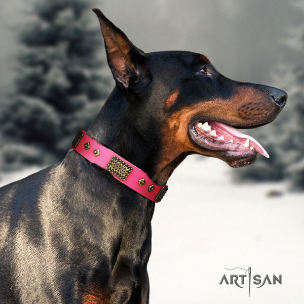 Doberman inimitable genuine leather collar with studs for your pet