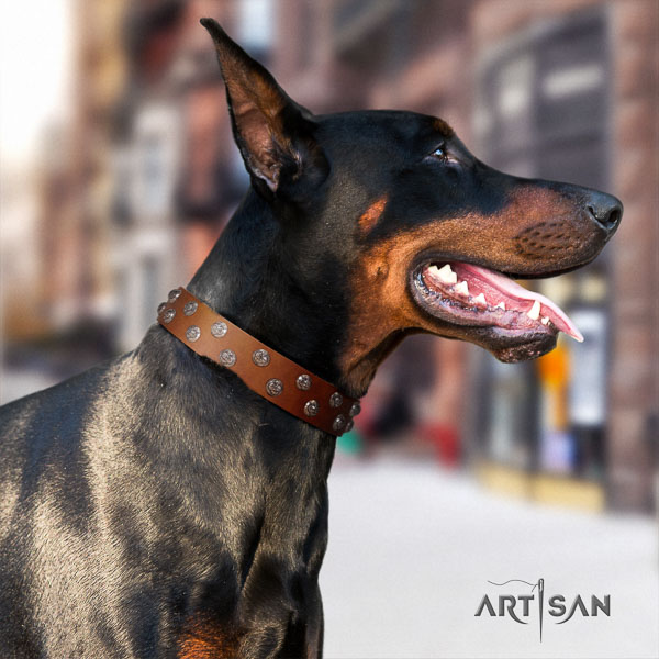 Doberman leather dog collar with studs for your attractive doggie