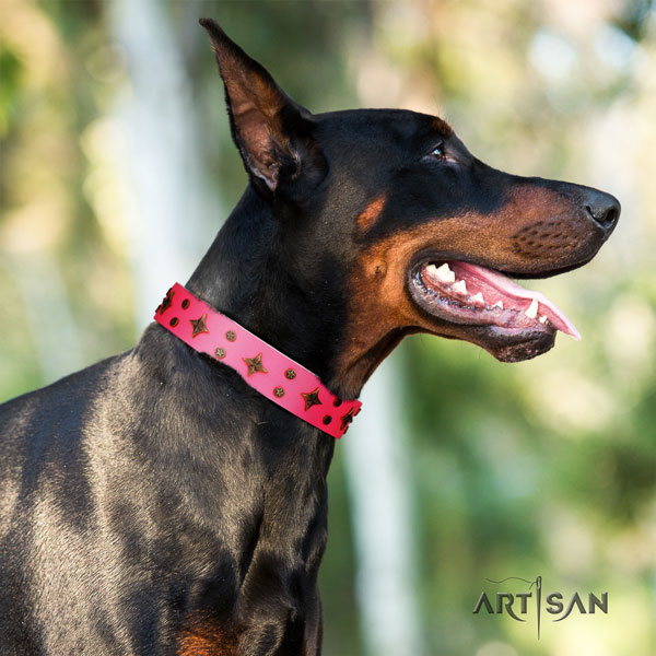 Doberman genuine leather dog collar with adornments for your handsome four-legged friend
