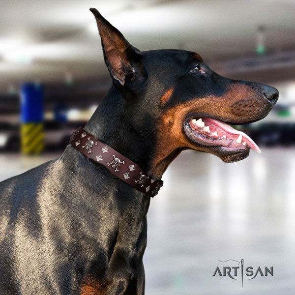 Doberman full grain natural leather dog collar with studs for your stylish dog