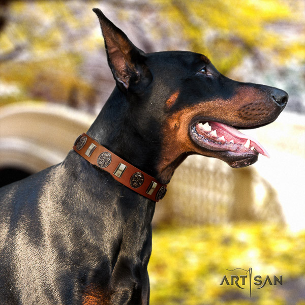Doberman handy use full grain natural leather collar with embellishments for your canine