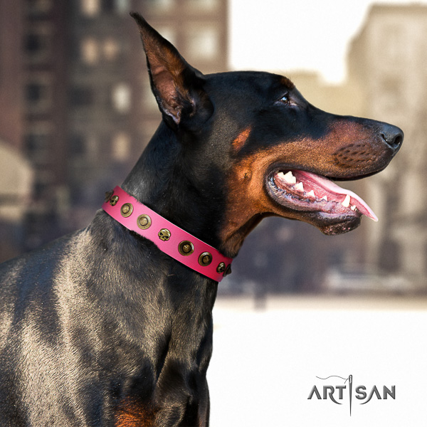 Doberman everyday use leather collar with embellishments for your canine