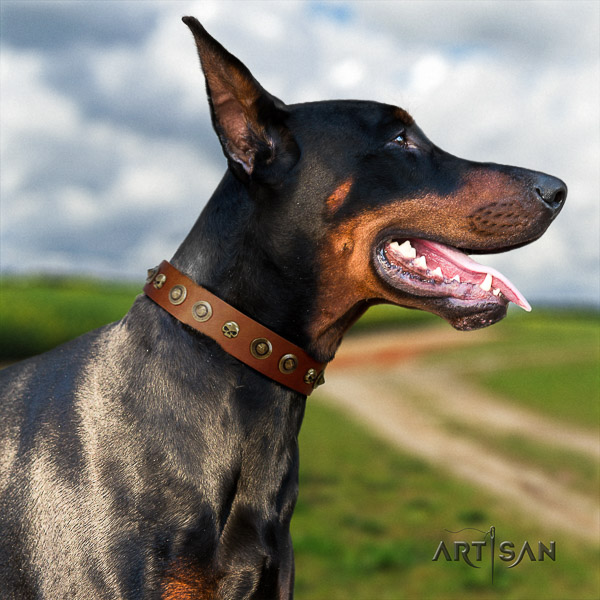 Doberman walking genuine leather collar with decorations for your doggie