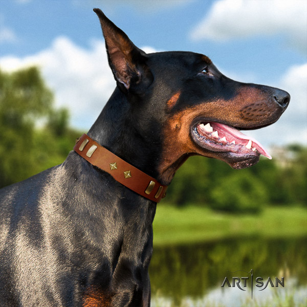 Doberman everyday use full grain leather collar with decorations for your pet