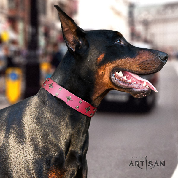 Doberman comfy wearing genuine leather collar with exquisite studs for your canine