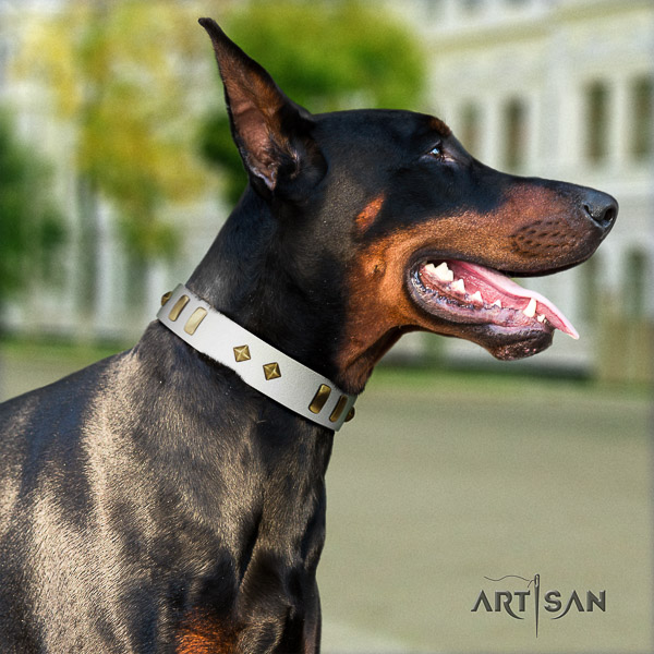 Doberman everyday use full grain natural leather collar with adornments for your dog