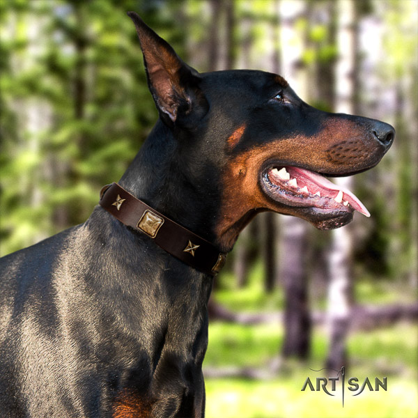 Doberman everyday use full grain natural leather collar with embellishments for your pet