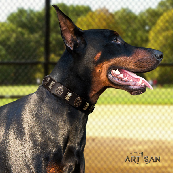 Doberman handy use full grain genuine leather collar with decorations for your doggie
