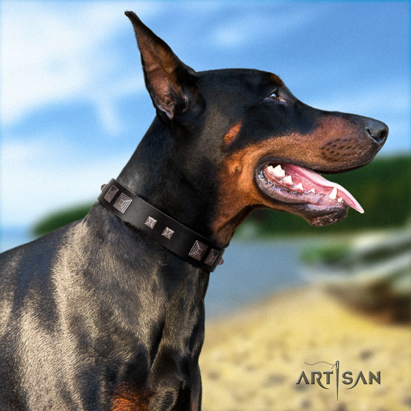 Doberman full grain natural leather dog collar with adornments for your beautiful doggie