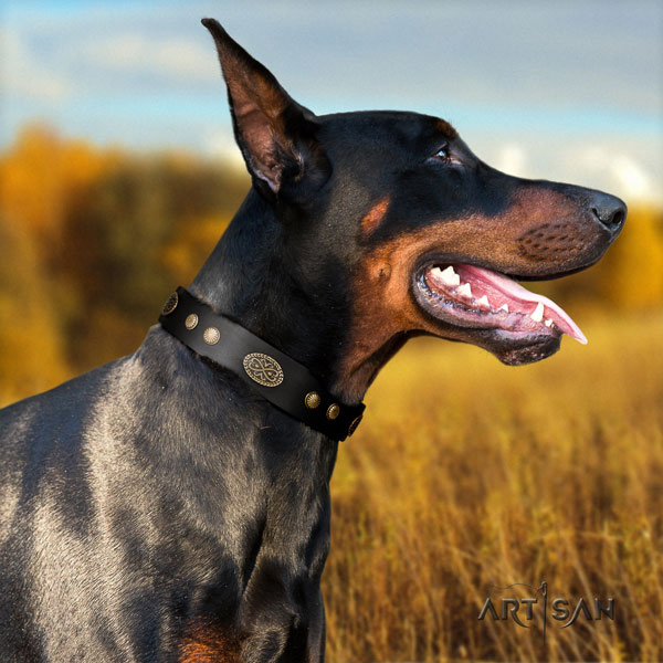 Doberman handmade natural genuine leather collar with adornments for your four-legged friend