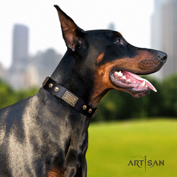 Doberman incredible leather collar with decorations for your dog