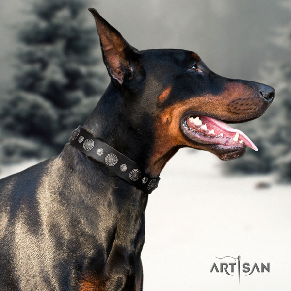 Doberman perfect fit natural genuine leather collar with embellishments for your dog