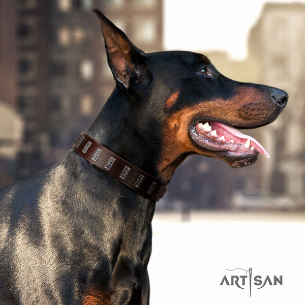 Doberman natural genuine leather dog collar with adornments for your impressive canine
