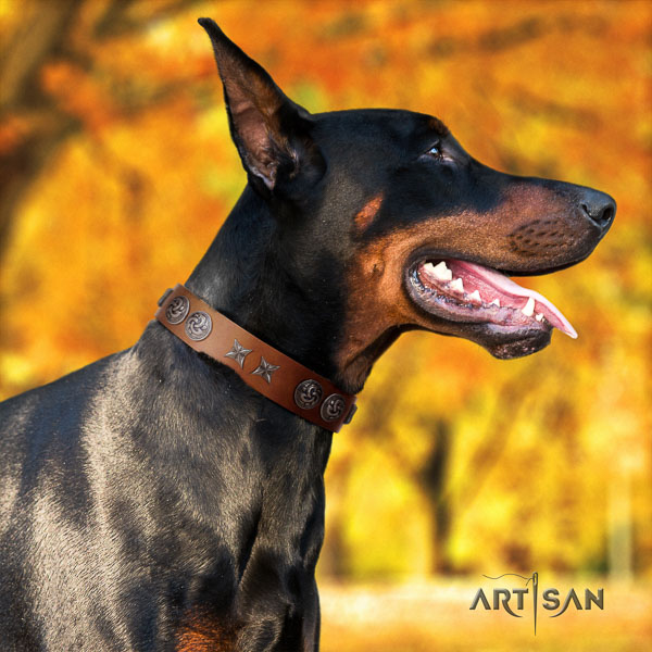Doberman full grain genuine leather dog collar with decorations for your stylish dog