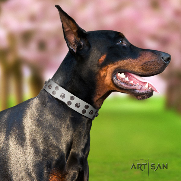 Doberman natural genuine leather dog collar with studs for your attractive pet