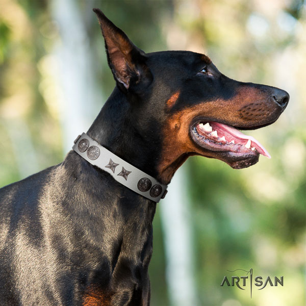 Doberman full grain leather dog collar with studs for your lovely dog