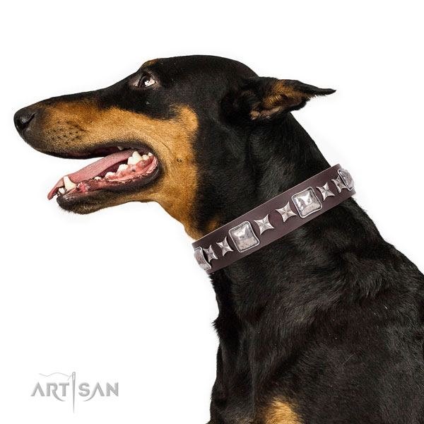 Doberman stylish design full grain natural leather dog collar for daily walking