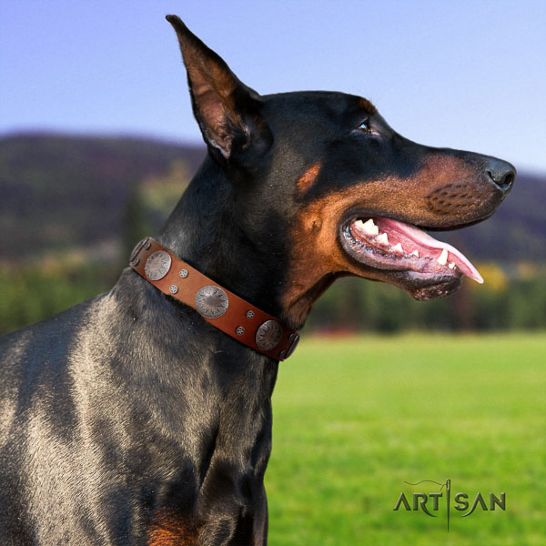 Doberman natural genuine leather dog collar with studs for your beautiful dog