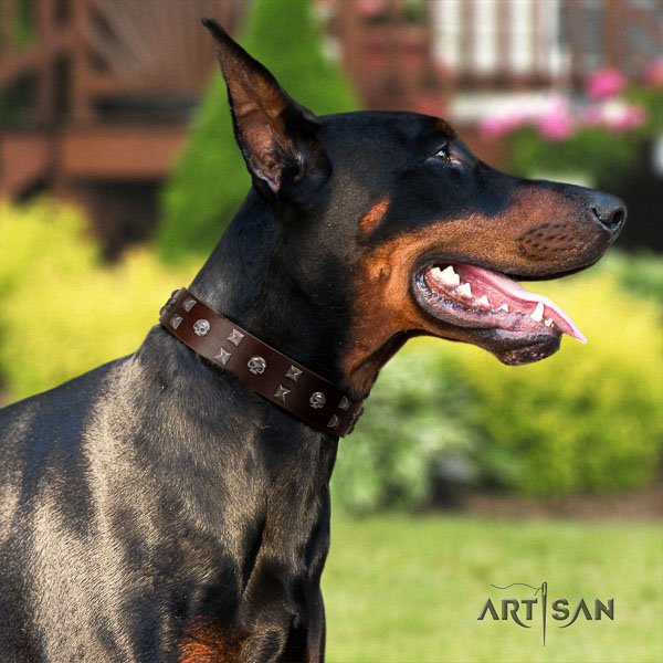 Doberman genuine leather dog collar with decorations for your stylish four-legged friend