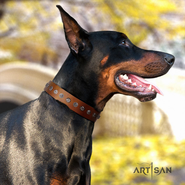 Doberman natural genuine leather dog collar with adornments for your lovely canine