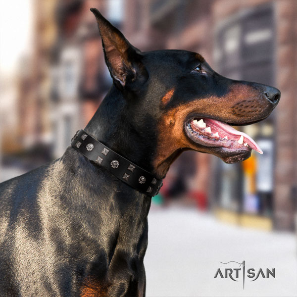 Doberman leather dog collar with adornments for your handsome pet