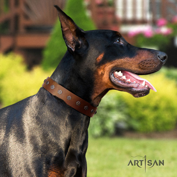 Doberman full grain leather dog collar with embellishments for your beautiful four-legged friend