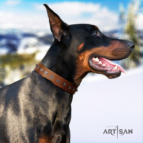 Doberman full grain genuine leather dog collar with adornments for your beautiful four-legged friend