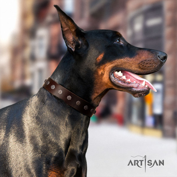 Doberman full grain natural leather dog collar with studs for your beautiful pet